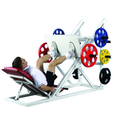 FW-20 Inverted Leg Press