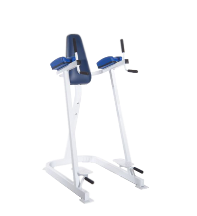 PLR-490 Hip Flexion/Dip Station/Push UP