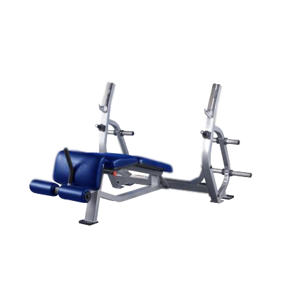 PLR-300 Olympic Decline Bench Press
