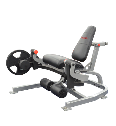 RPL-45 Seated Thigh Extension